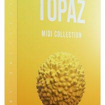 Cymatics Topaz MIDI Collection