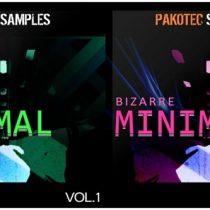 Pakotec Samples Bizarre Minimal Vol 1 & 2 WAV REX AIFF