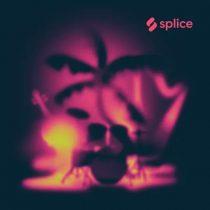 Splice Originals Paradise Found with The Splice Orchestra WAV