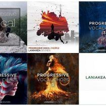 Laniakea Sounds Progressive Vocal Chops Bundle WAV