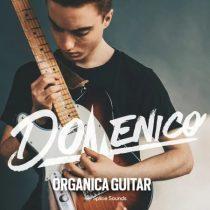 Splice Sounds DOMENICO: Organica Guitar WAV