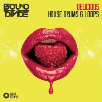 BOS Delicious House Drums & Loops WAV