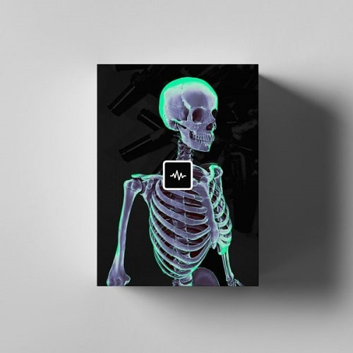 WavSupply Nick Mira Phantom (Loop Kit) WAV