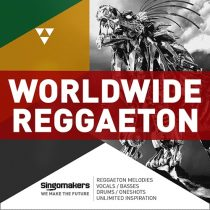 Worldwide Reggaeton MULTIFORMAT