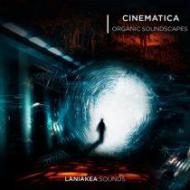 Laniakea Sounds - Cinematica Organic Soundscapes WAV
