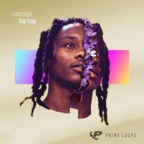 PL Conscious Hip Hop WAV