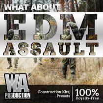 EDM Assault WAV MIDI PRESETS