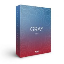 Aubit Sound Gray Vol 2 MULTIFORMAT