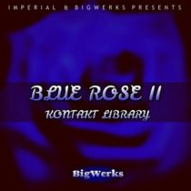 BigWerks Blue Rose II - Kontakt