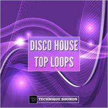 Technique Sounds Disco House Top Loops WAV AIFF