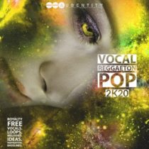 Vocal Reggaeton Pop 2K20 WAV