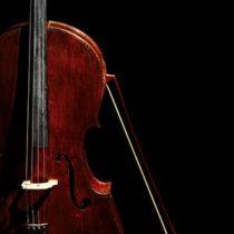 Auddict United Strings of Europe: Basses KONTAKT