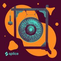 Splice Originals Experimental Percussion with Susie Ibarra WAV