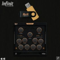 Infinit Essentials Infinit Guitars VST AU WIN & MacOSX