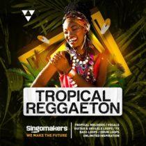 Tropical Reggaeton Sampe Pack WAV