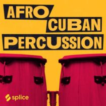 Splice Originals Afro Cuban Percussion with Elizabeth Pupo Walker WAV