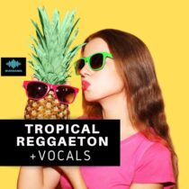 Seven Sounds Tropical Reggaeton + Vocals SamplePack