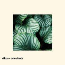 Vikas Synth Shots Library WAV