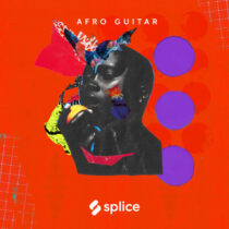 Splice Sessions Senegalese Guitar with Malick Diouf WAV