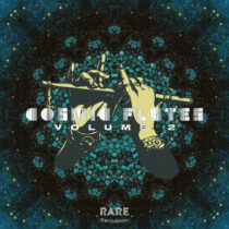 RARE Percussion Cosmic Flutes Vol.2 WAV