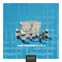 RARE Percussion Rare Ingredients Vol.2 WAV