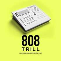 808 Trill - 808 Style Xfer Serum Presets