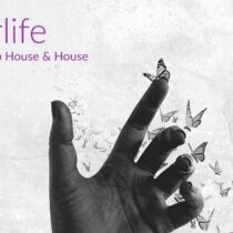 Afterlife - Modern Deep House & House Sample Pack & Presets