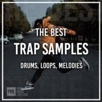 The Best Trap Sample Pack WAV FL Studio & Ableton Project
