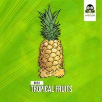 Vandalism Samples MIDI: Tropical Fruits