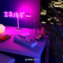 Capsun ProAudio Bedroom Beats & Lofi Hip-Hop Vol.2 WAV